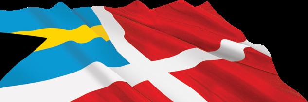BMA Flag