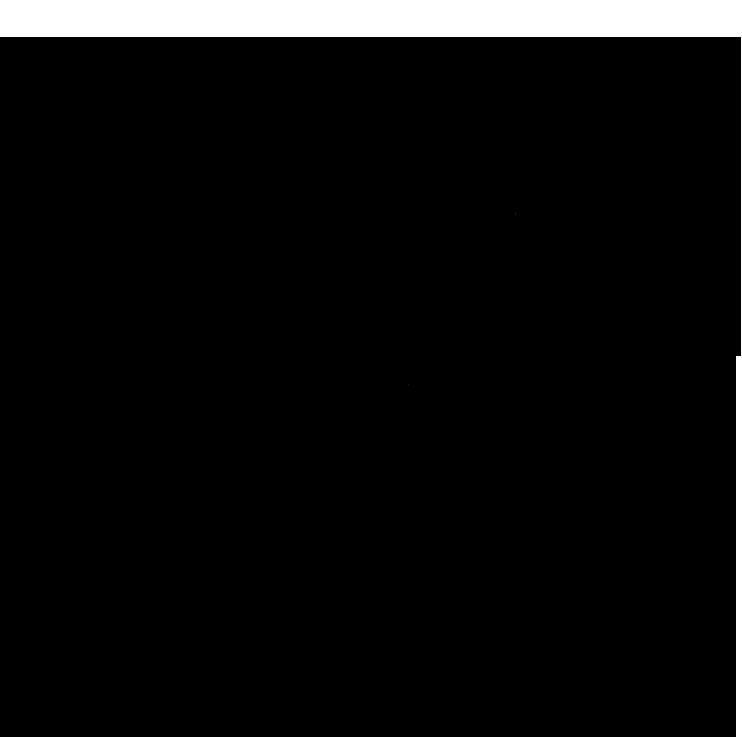 BMA watermark crest